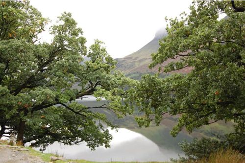 Lakes - Buttermere