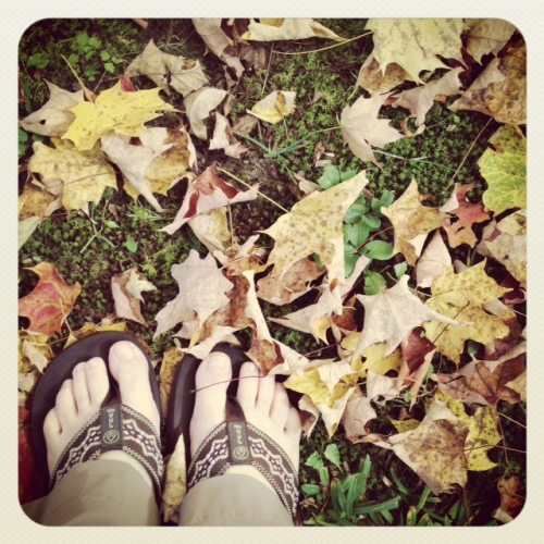 Perfect weather for hiking pants and flip-flops on crunchy leaves.