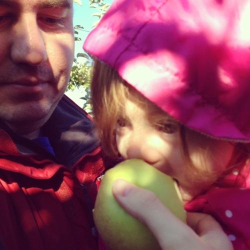 apples10